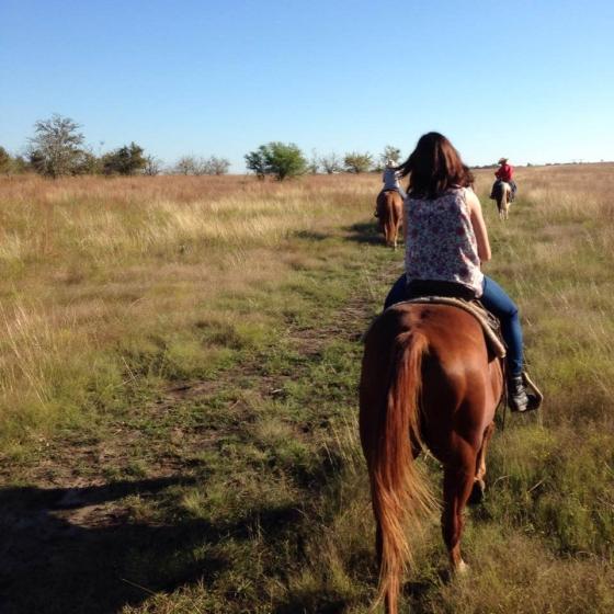 Livin' That Ranch Life // Run. Crave. Conquer. blog